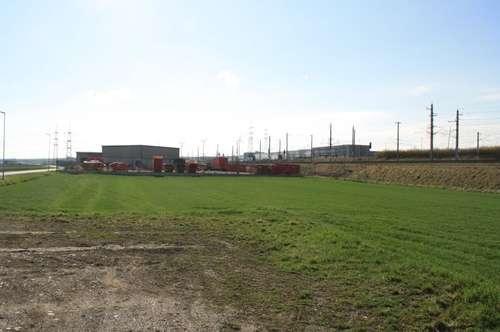 Grundstück ca. 6.078 m² im Bauland Betriebsgebiet iV in Loosdorf