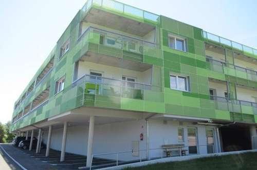 Wohnen am Linzerberg