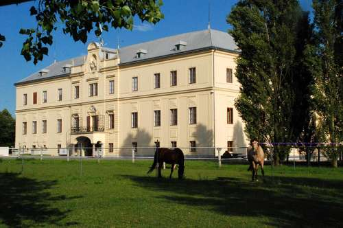 Eine provisionsfreie Schlosswohnung zwischen Amstetten und Ybbs an der Donau