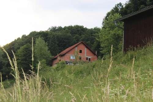 Einmalige Heim-Idylle und / oder Investition in der Steiermark