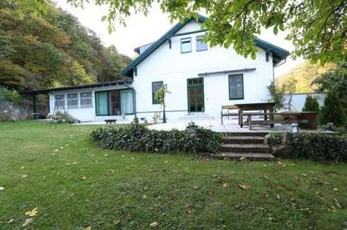 Baden/Pfaffstätten - Repräsentatives Haus mit 3 Wohneinheiten in Grünruhelage mit großem Garten/115