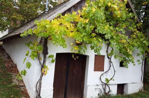 Verkaufe tollen Weinkeller in Velm Götzendorf am Kellerberg