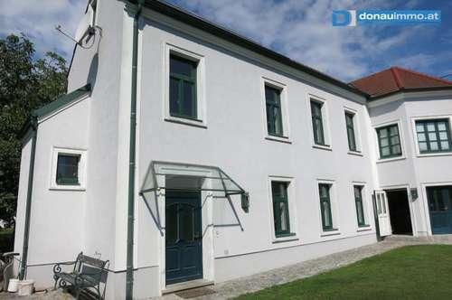 Langenlois: Tolle Mietwohnung in Ruhelage mit Gartenbenützung