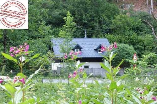 Knusperhaus ohne Hexe sucht Hänsel & Gretel