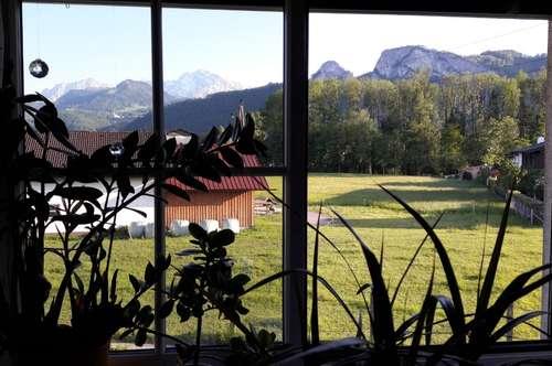 3,5-Zi-Whg in Puch/Hallein m. Garten + Balkon (provisionsfrei!)