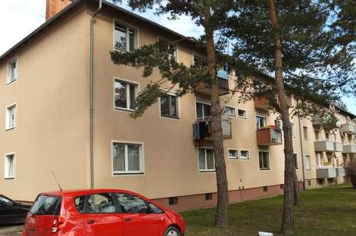 PROVISIONSFREI - Wagna - ÖWG Wohnbau - Miete - 2 Zimmer