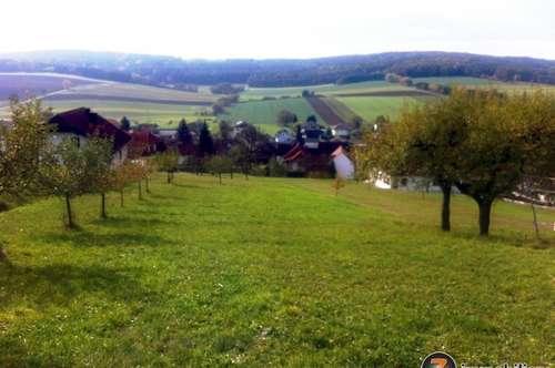 Mischendorf: Schönes Baugrundstück mit geologischem Gutachten