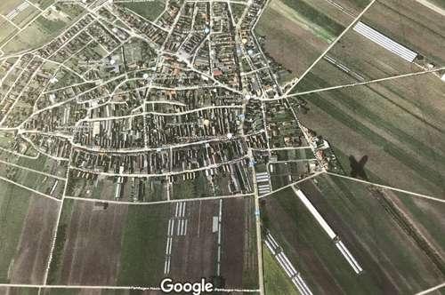 Grundstück in Pamhagen zu verkaufen