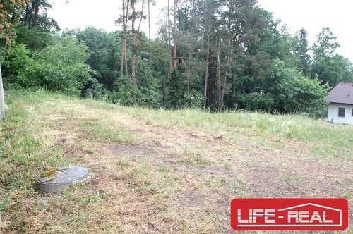 Grundstück in Ruhe- und Waldrandlage