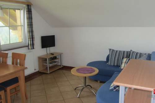 3 ZW ca. 56 m2 + Balkon in Seeham!
