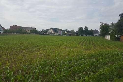 Zentral gelegene Baugründe nähe Schwanenstadt