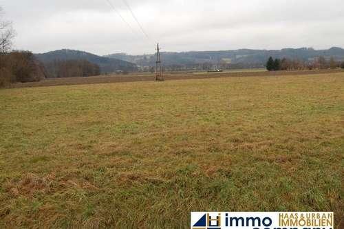 Industriegrundstück - Optimale Lage, nah bei Fürstenfeld - 9km zum Autobahnanschluss Wien und Graz