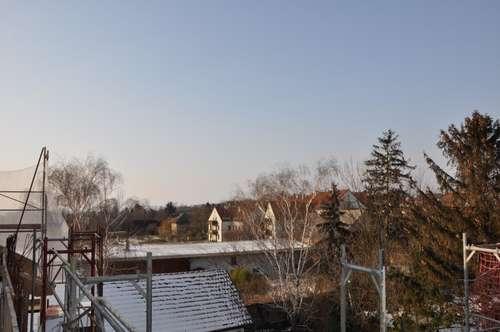 Luxus Neubau nähe Korneuburg! Garten-Terrasse-Dachterrasse! Hauscharakter! gratis Küche bis 31.03.2018!
