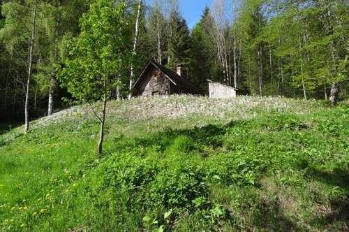 kleine Hütte mit zusäztlichem Baugrund