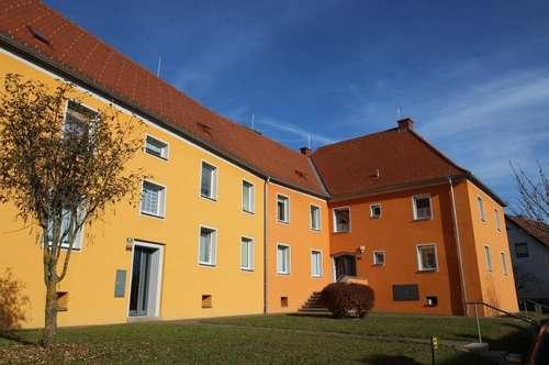Leistbares Wohnen: Preiswerte Singlewohnung mit Küche - in sonniger Ruhelage im Grünen