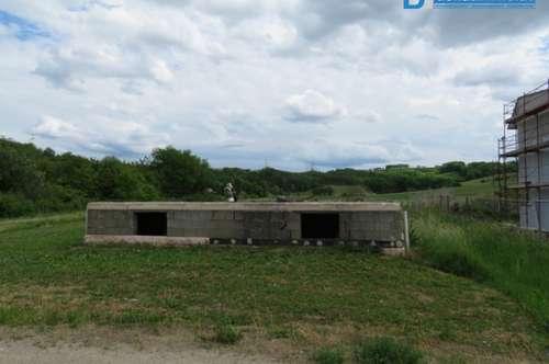 2051 Platt: Pendlergeignete Bauparzelle mit Rohbaukeller (Reserviert!)