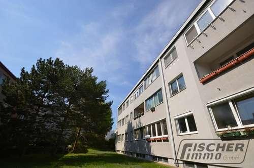 Schöne 3 Zimmer-Wohnung mit südseitiger Loggia und leistbarer Miete!!