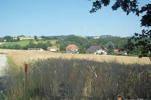 Nähe Pinkafeld: Bauplätze in sonniger, ruhiger Lage
