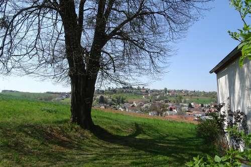LIEBHABEROBJEKT IN RUHIGER LAGE MIT HERRLICHEM AUSBLICK