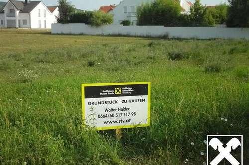 ECKGRUNDSTÜCK OBERHALB DER B 50 IN RUHIGER SIEDLUNGSLAGE