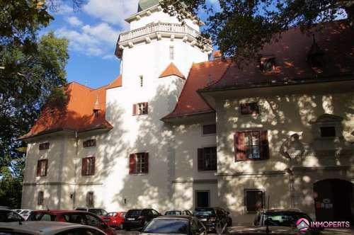 Einfamilienhaus in Tribuswinkel in der Nähe des Schlossparks