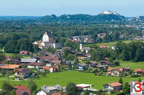 Elsbethen: Neuw. 3 Zi - WHG mit Garten und herrlicher Aussicht zum Mieten!
