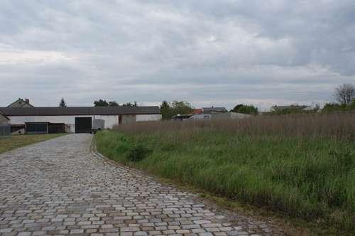 Bauträgerobjekt - Zentrum Kittsee - Baugrundstück