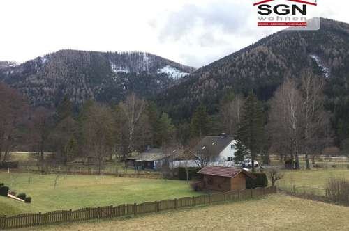 Wohnung in Schwarzau im Gebirge