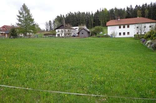 Elz - Sehr schönes Baugrundstück mitten in Elz