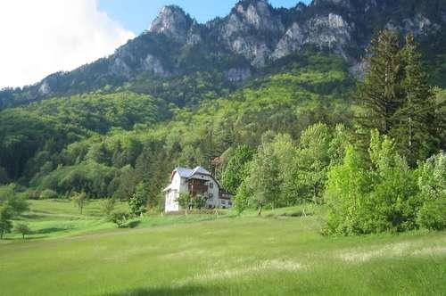 Mietwohnung mit Garten in alleinstehender Villa mit Raxblick