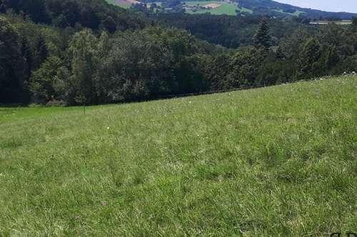 Baugrundstück in naturnaher Lage - insgesamt ca. 2000 m²