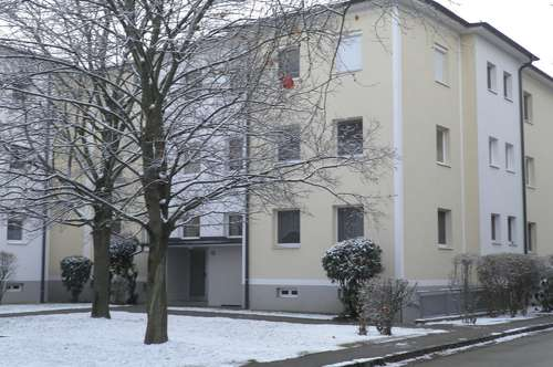 Nähe Wr. Neustadt