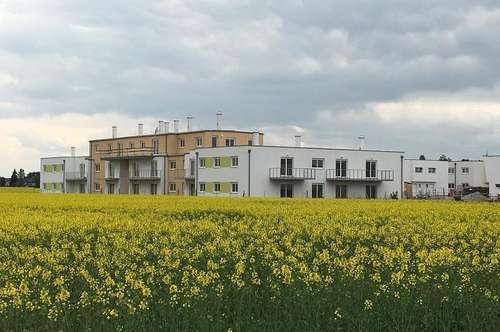 TOP20: 26 Wohneinheiten, 54 - 87m² Gänserndorf Süd - PROVISIONSFREI für Käufer