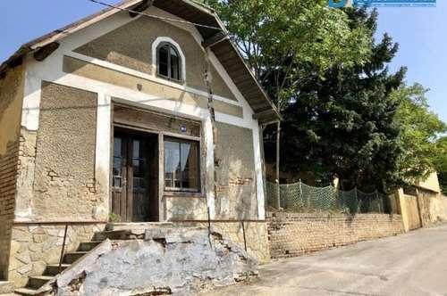2165 Kleinschweinbarth: ehemaliges Kaufhaus - sucht neuen Verwendungszweck