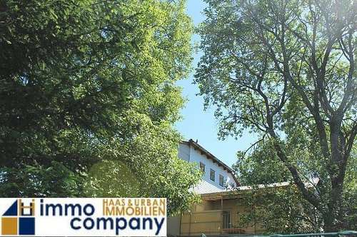 Einfamilienhaus auf über 2000m² Grund mit Obstbaumbeständen bei Großpetersdorf