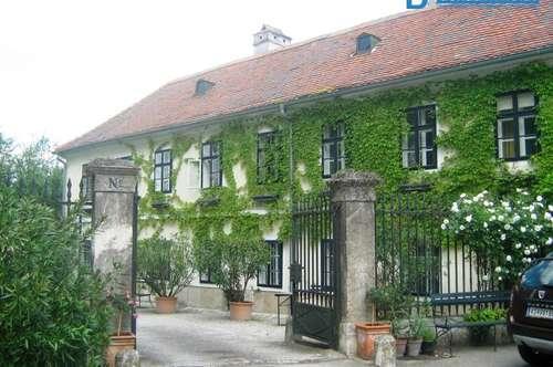 Repräsentatives Wohnhaus in Hollenburg zu vermieten!