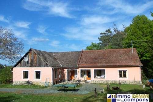 Schönes Einfamilienhaus, ca. 140 m² Nfl., ca. 1523 m² Grund – Ruhig und Grün gelegen in der Nähe von Güssing!