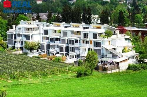 2-Zimmer-Wohnung, Ruhelage, Terrasse/Garten