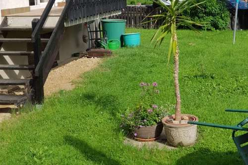 Ideal für Hundebesitzer - 2-Zimmer-Wohnung mit eigenem Garten