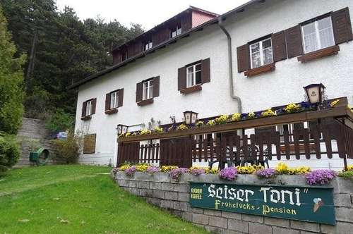 Pension Seiser Toni Hohe Wand