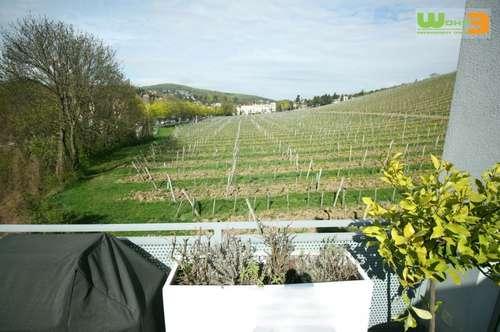 meine Wiener-Toscana... mit Terrasse