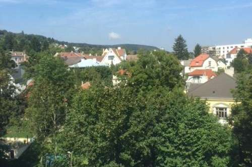 Den Herbst geniessen - Grünruhelage - Repräsentative Dachterrassenwohnung in Klosterneuburg
