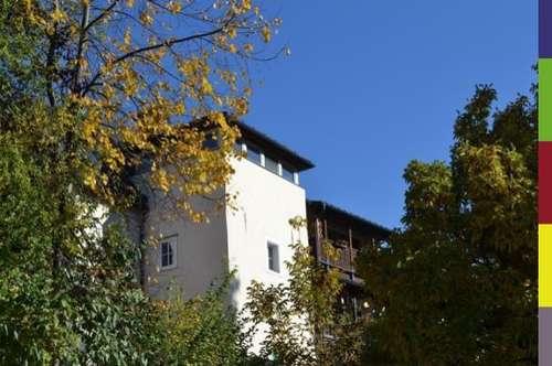 Dachgeschoßwohnung mit Terrasse/Anlegerwohnung in Waidhofen/Ybbs