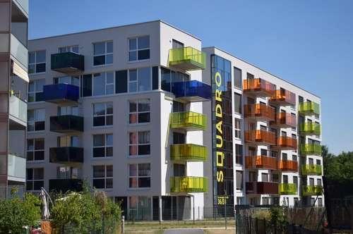 UMZUGSAKTION - 1 MONAT MIETFREI - Hübsche 2 ZI-Wohnung - inkl. Küche u. Balkon