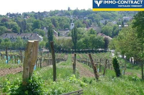 Unbefristet Wohnen bei den Weingärten (inkl. Heizkosten)