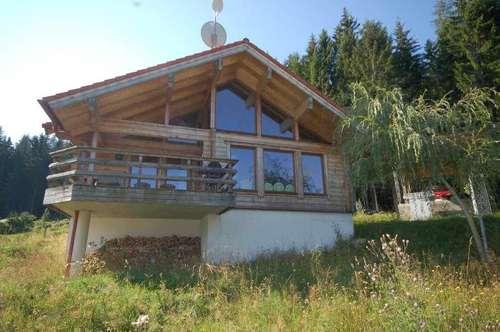 Hochwertiges Holzhaus am Verditz