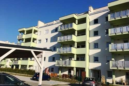 Wr. Neudorf - Neuwertige 3 Zimmer Wohnung mit Balkon