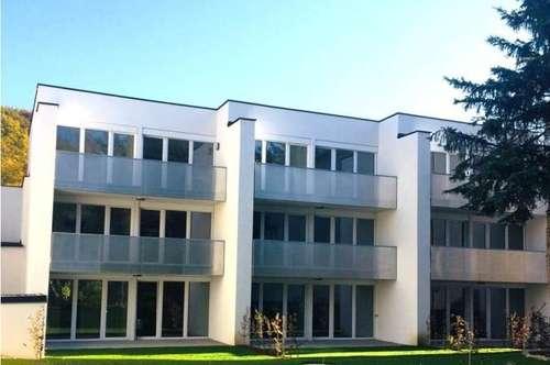 PURKERSDORF - Erstbezug FRÜHJAHRSAKTION 1. Monat mietfrei !