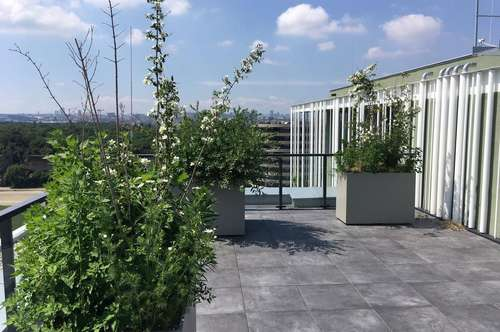 Luxury furnished 2 rooms, 2 balconies, rooftop terrace, next to WU