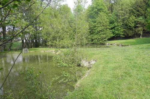 Fischteiche - Freizeitgrund - Kleinwald in Taiskirchen